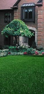 central ohio ornamental tree shrub estimate request form