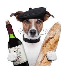 thanksgiving dog when to feast u0026 when to fret u2013 a thanksgiving lesson from pet