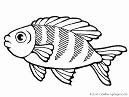 goldfish coloring pages realistic bebo pandco