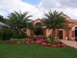 brilliant home backyard landscaping ideas images of florida