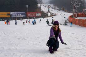 walk with cham things to do in south korea during winter