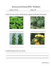 environmental science evs animals worksheet class ii