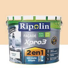 Pierre Allume Feu Leroy Merlin Peinture Façade 2en1 Xpro3 Ripolin Ton Pierre 10 L Leroy Merlin