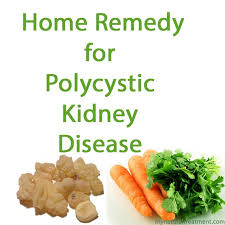 best 25 kidney dialysis ideas on pinterest kidney cleanse