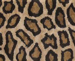 Cheetah Area Rug The Most Awesome Cheetah Print Area Rug Modern Mbnanot