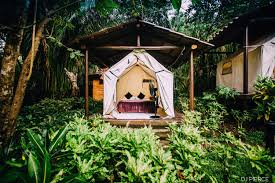 platform tent accommodations blue spirit yoga costa rica
