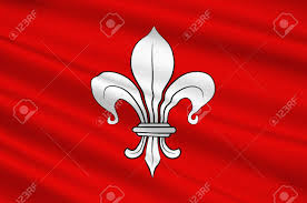 The France Flag Flag Of Lille It Is The Capital Of The Hauts De France Region