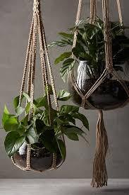 stylist inspiration indoor hanging planter home designing