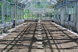 preparing my vegetable greenhouse for planting the martha