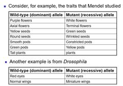 inheritance pattern quizlet test wk4 chapter 4 extensions of mendelian inheritance i quizlet