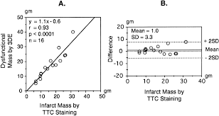 three dimensional echocardiographic estimation of infarct mass