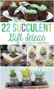 craftaholics anonymous 22 succulent gift ideas
