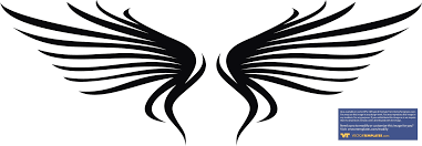 wings images