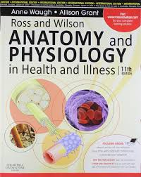 Anatomy Videos Free Download Buy Ross And Wilson Anatomy And Physiology In Health And Illness