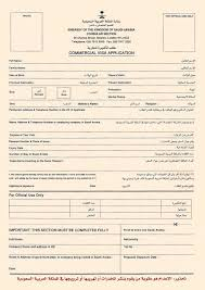 visas2go application for a saudi visa