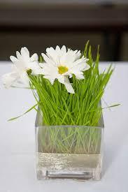 Daisy Centerpiece Ideas by 26 Best Daisy Centerpieces Images On Pinterest Flower