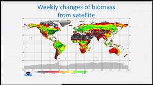 Msu Interactive Map How Are The Plants Doing Ask A Drone Bruno Basso Ph D Cas