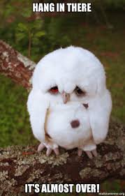 Hang In There Meme - hang in there it s almost over sad owl make a meme