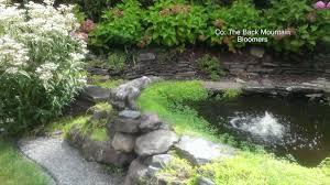 tour of the back mountain gardens wnep com