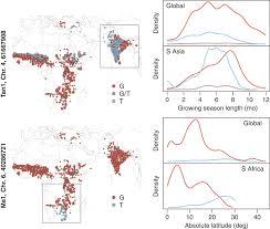 genome environment associations in sorghum landraces predict