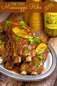 best 25 slow cooker pork ribs ideas on pinterest slow cooker