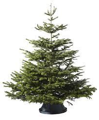 live christmas trees for sale ikea live christmas tree ikea