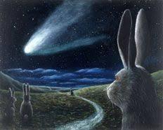 Emma Freud Rabbit Hutch 295 Best Bunny Weirdness Images On Pinterest Bunnies Bunny