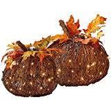 amazon com pre lit grapevine pumpkin fall decoration large