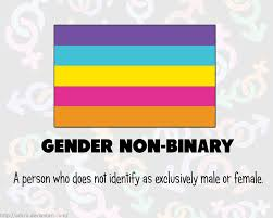 Polyamory Flag Rainbow Flags Gender Non Binary By Adcro On Deviantart