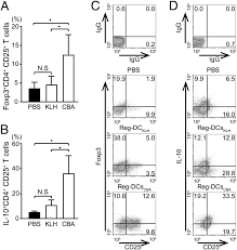 regulatory dendritic cells pulsed with carbonic anhydrase i