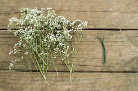 baby s breath flowers diy baby s breath flower crown diy crafts 100 layer cakelet