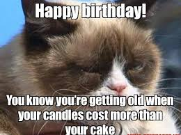 Cute Birthday Meme - happy birthday funny meme nicewishes