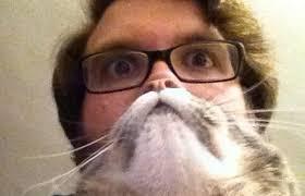 Cat Beard Meme - cat beards meme is the news internet craze sweeping the world