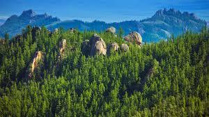 plants native to russia habitats san diego zoo animals u0026 plants