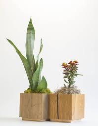 indoor modern planters modern planter indoor planter square planter cactus wooden planter