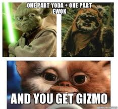 Ewok Memes - un categorized one part yoda one part ewok and you get gizmo