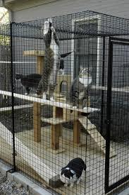 usa cat enclosures home of habitat haven