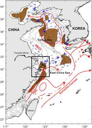 East China Sea Map Trapping And Escaping Processes Of Yangtze River Derived Sediments
