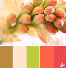 a tuberose inspired color palette color pinterest color