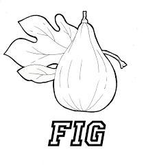 figs u2013 wallpapercraft