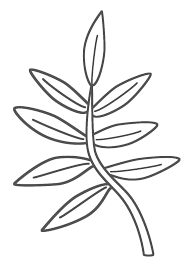 branch coloring page plants