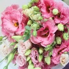Flower Wholesale Cheap Fresh Cut Flowers Wholesale Fresh Cut Flowers Discount Fresh