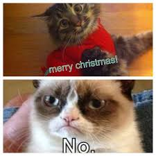 Grumpy Cat Memes Christmas - grumpy cats christmas 06