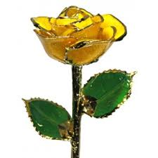 gold dipped roses roses condon jewelers