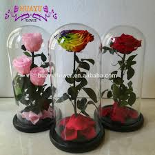 list manufacturers of long stem rose buy long stem rose get