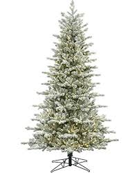new shopping special vickerman frosted eastern frasier fir