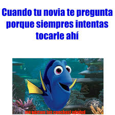 Dory Memes - 纎ltimos memes memedroid