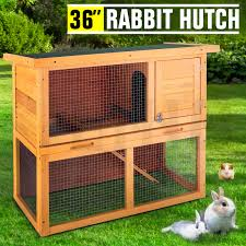 Cheap Rabbit Hutch 36