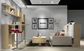living room contemporary magnificent sofa design for small living