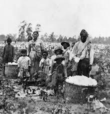 slavery slave family cotton savannah georgia 1860s slave